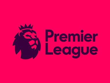英超联赛新logo:去掉狮身保留狮子头